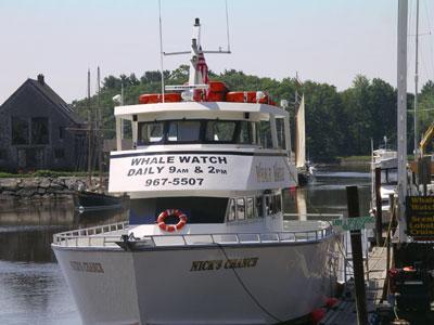 Kennebunkport Maine Ocean Activities Whale Watch Lobster