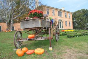 w-farm-mum-wagon2