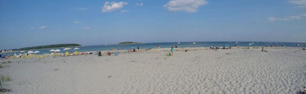 Beach Goose Rocks Perfect