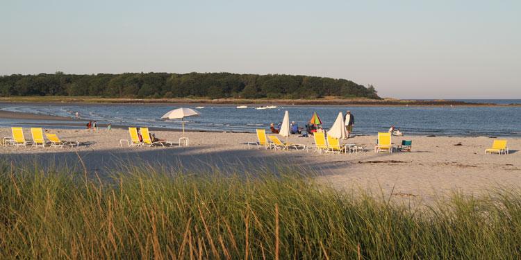 beach-gooserocks1