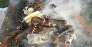 lobster-bake-breakwater6