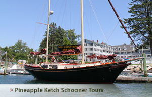 pineapple-ketch-schooner-tour-dock
