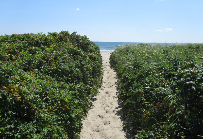 2beach-walk-path