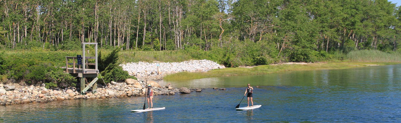 activity-paddle-boarding