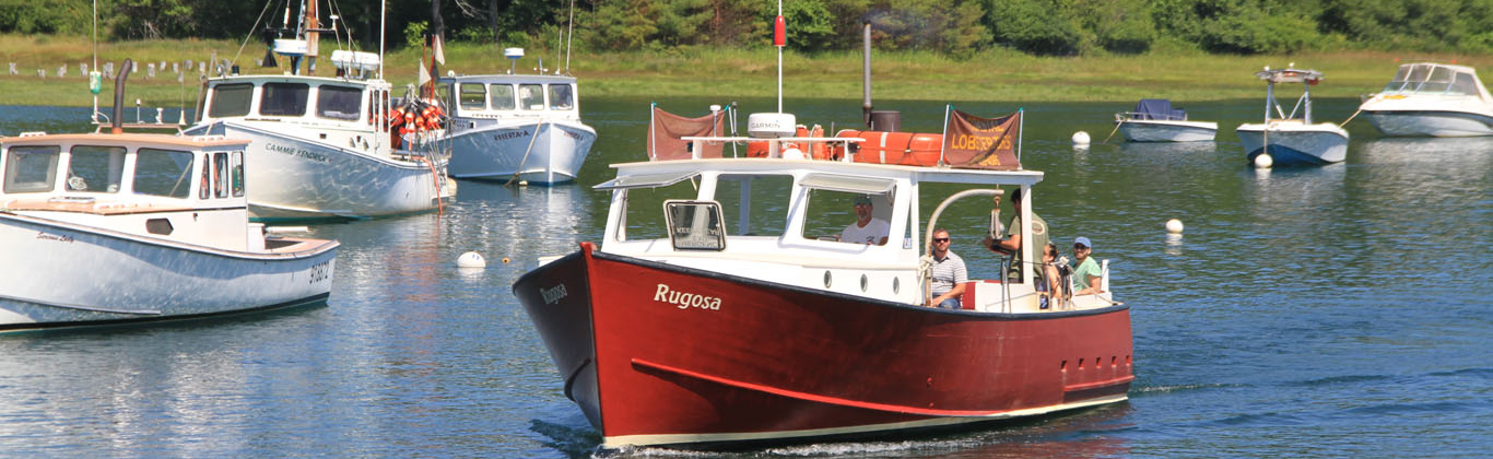 activity-rugosa-lobster-boat-ride