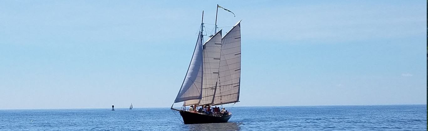 Kennebunkport Maine Ocean Activities Whale Watch Lobster Boat Tours | Kennebunkport Maine Hotel ...