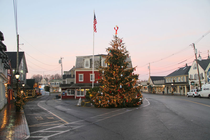 am-christmas-tree4