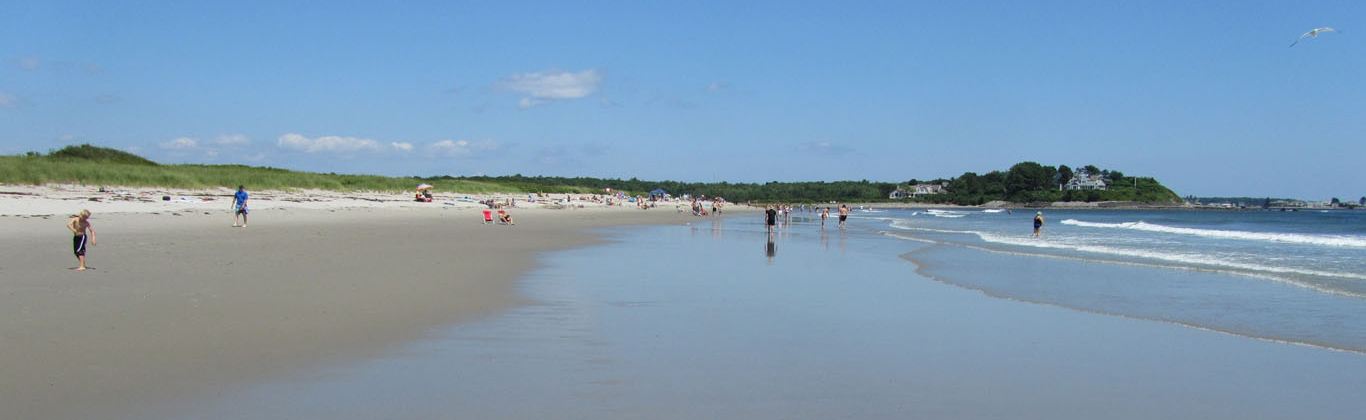 Beach Parsons Sand