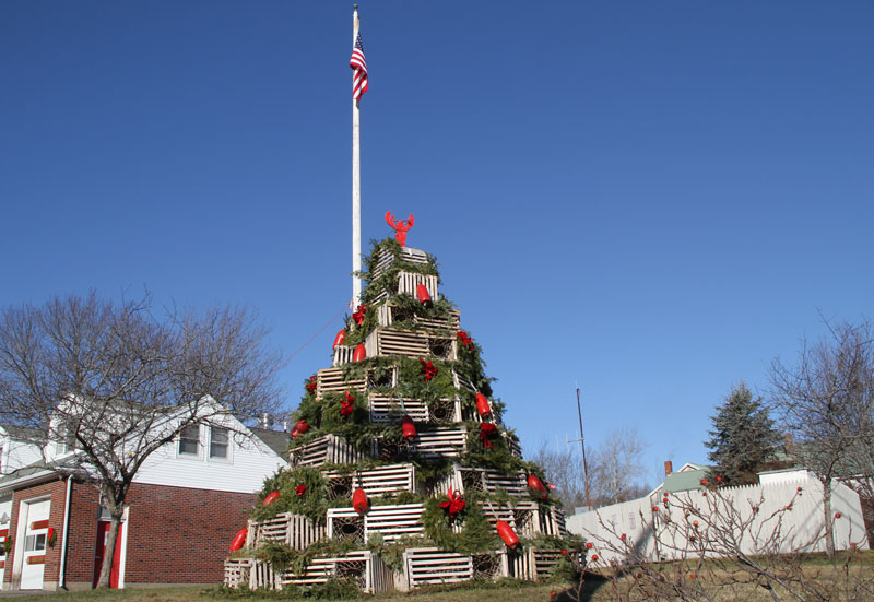 cape-porpoise-christmas-tree
