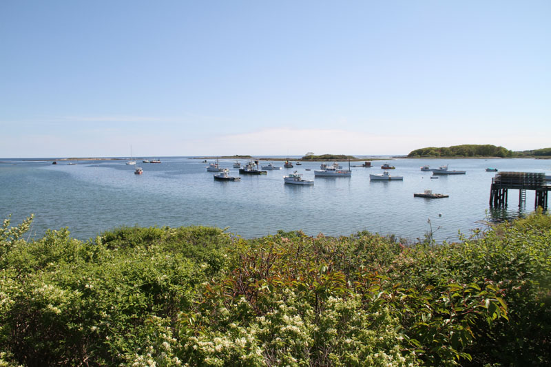 cape-porpoise-harbor