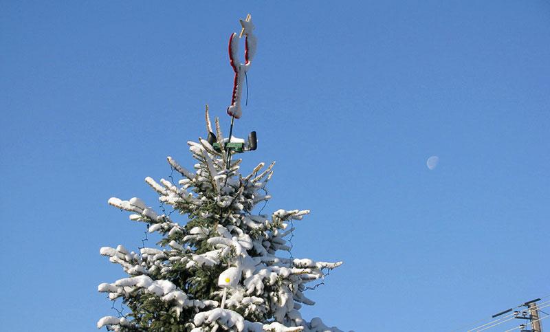 christmas_prelude-tree-snow