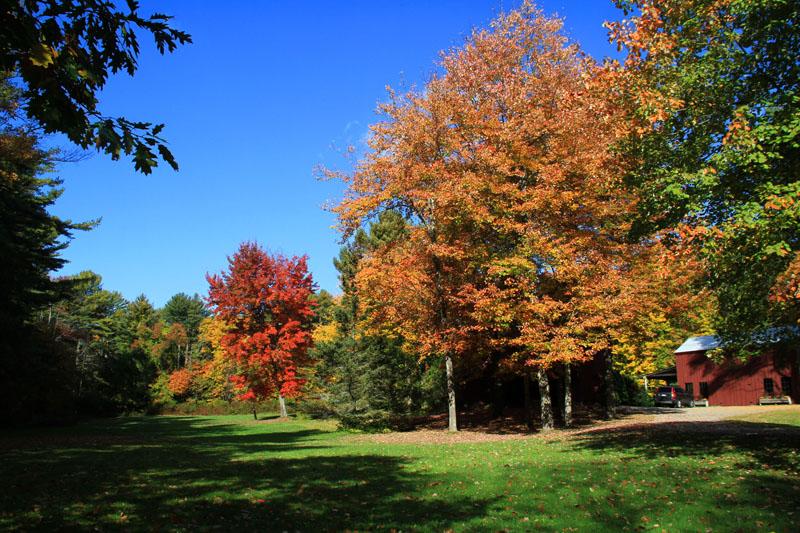fall-foliage-14-me6