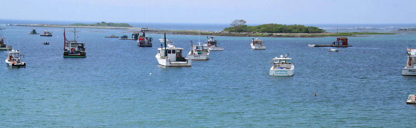 kennebunkport-cape-porpoise-lobster-boats