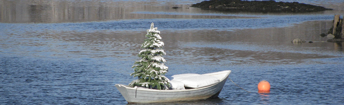 winter-christmas-tree-dory