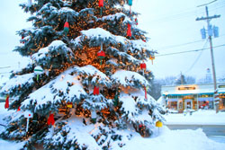 christmas-snowy-tree4